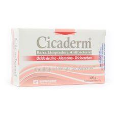 Salud-y-Medicamentos-Medicamentos-formulados_Cicaderm_Pasteur_272176_unica_1.jpg