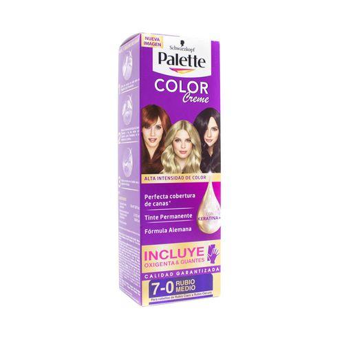 Cuidado-Personal-Cabello_Palette_Pasteur_299637_tubo_1