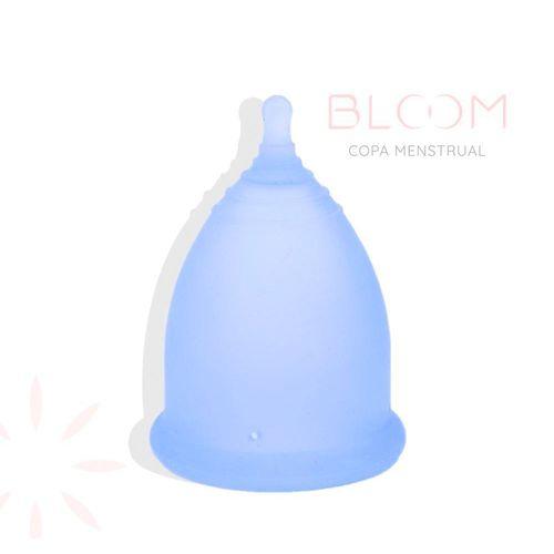 Salud-y-Medicamentos-De-Control_Bloom_Pasteur_1076000_caja_1