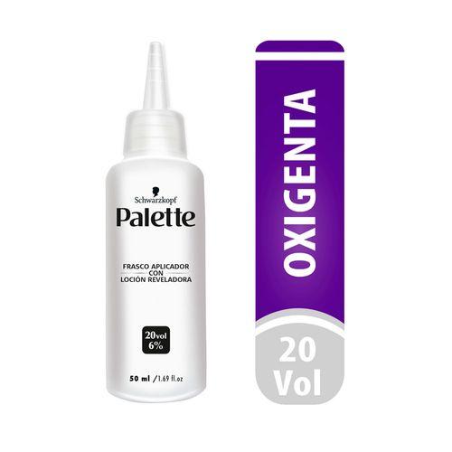 Cuidado-Personal-Cabello_Palette_Pasteur_299990_frasco_1.jpg