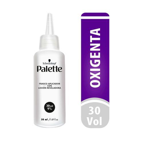 Cuidado-Personal-Cabello_Palette_Pasteur_299991_frasco_1.jpg