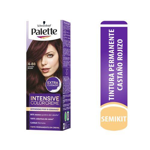 Cuidado-Personal-Cabello_Palette_Pasteur_299630_tubo_1.jpg