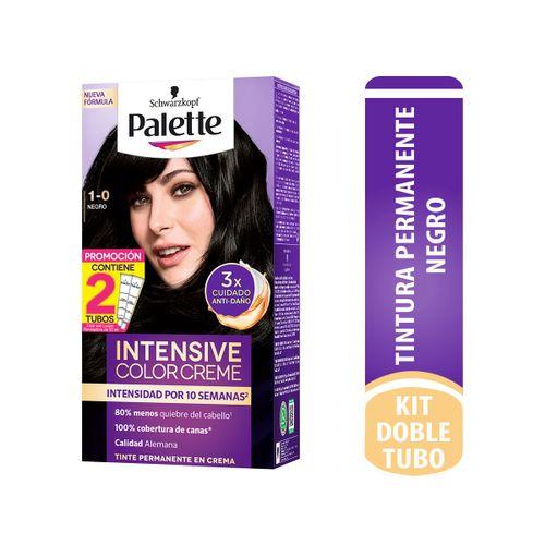 Cuidado-Personal-Cabello_Palette_Pasteur_299810_caja_1.jpg